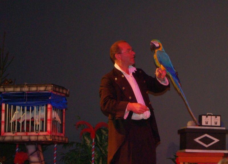 ara et magicien à Beuvry