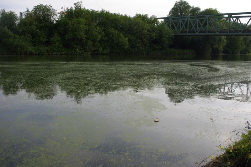 canal grand gabarit beuvry 24 juin 2010