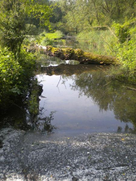 photo rivière militaire dans le marais d'annequin