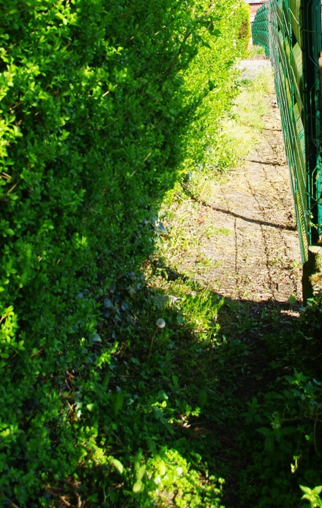 Les voyettes de Beuvry dans Ce blog - son auteur voyette-beuvry-2015