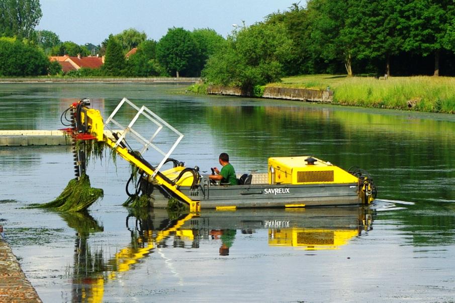 Beuvry - les eaux vertes dans Canaux algues-envahissantes-canal-beuvry-12-06-2015-5